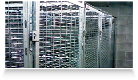 http://www.apartmentstoragelockers.com/wp-content/uploads/2012/10/fire-suppression-box.png